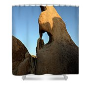Weathered Rock Shower Curtain