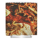 Weathered Scorpion Art Shower Curtain