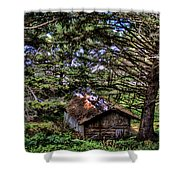 Weathered Shed Shower Curtain by David Patterson