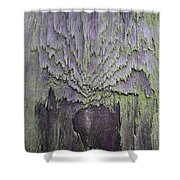 Weathered Wood And Lichen Abstract Shower Curtain