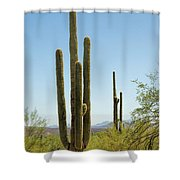 Weavers Needle Shower Curtain