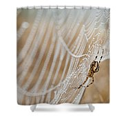 Web Administrator Shower Curtain