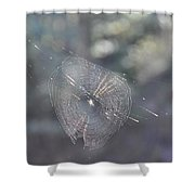 Web Reflections Shower Curtain