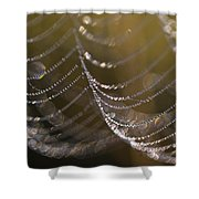Web Sparkle Shower Curtain