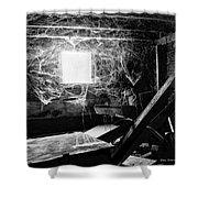 Webbed Window Shower Curtain