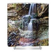 Webwood Falls Shower Curtain