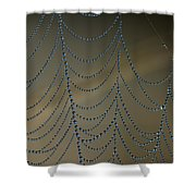 Webworks Shower Curtain