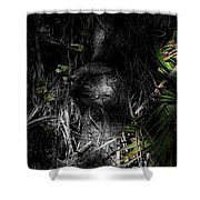 Weedon Number 2 Shower Curtain