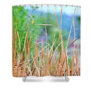 Weeds 033 Shower Curtain