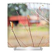Weeds 037 Shower Curtain