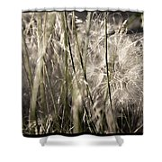 Weeds #1 - 310061 Shower Curtain