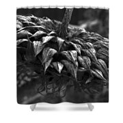 Weeds Can Be Beautiful Shower Curtain