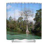 Weeki Wachee Springs Shower Curtain