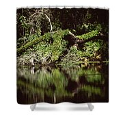 Weeki Wachee Springs Shower Curtain