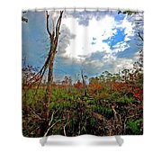 Weeks Bay Swamp Shower Curtain