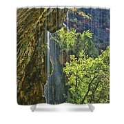 Weeping Rock - Zion Canyon Shower Curtain