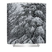 Weighed Down Shower Curtain
