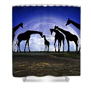 Welcome Shower Curtain