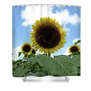 Welcome Friends Shower Curtain