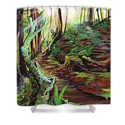 Welcome Paths Shower Curtain