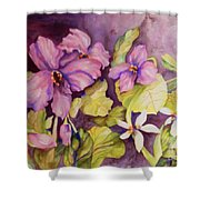 Welcome Spring Violets Shower Curtain