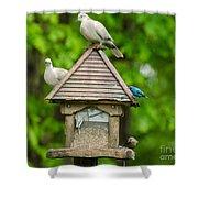 Welcome To My Bird Feeder Shower Curtain