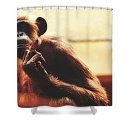 Welcome To The Zoo Shower Curtain