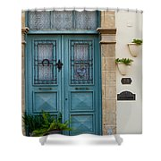 Welcoming Entrance And Strolling Cat Shower Curtain