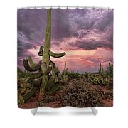 Well Armed At Dusk Shower Curtain