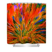 Well Of Colors Shower Curtain
