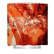 Wells Cathedral Gargoyles Color Negative B Shower Curtain
