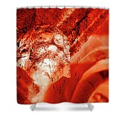 Wells Cathedral Gargoyles Color Negative C Shower Curtain