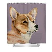 Welsh Corgi Dog Painting Shower Curtain