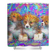 Welsh Corgi Pups Shower Curtain
