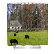 Welsh Farmhouse Shower Curtain