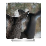 We're All Ears Shower Curtain