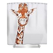 West African Giraffe Shower Curtain