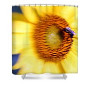 West Flow Shower Curtain