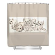 West Highland White Terrier Puppies Shower Curtain