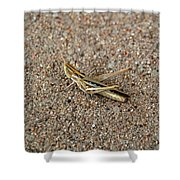 West Texas Hopper Shower Curtain