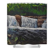 West Virgina Water Falls Shower Curtain