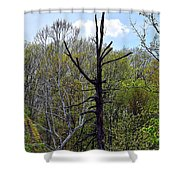 Westcreek Reservation 6 Shower Curtain