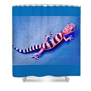 Western Banded Gecko Shower Curtain