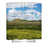 Western Color Shower Curtain