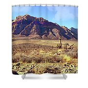 Western Desolation Shower Curtain