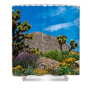 Western Grand Canyon Area Shower Curtain