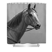 Western Quarter Horse Black And White Shower Curtain