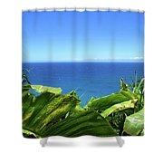 Western Shore Kauai Shower Curtain