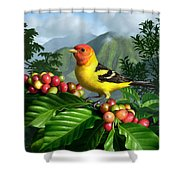 Western Tanager Shower Curtain by Jerry LoFaro