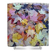 Wet Fall Leaves Shower Curtain